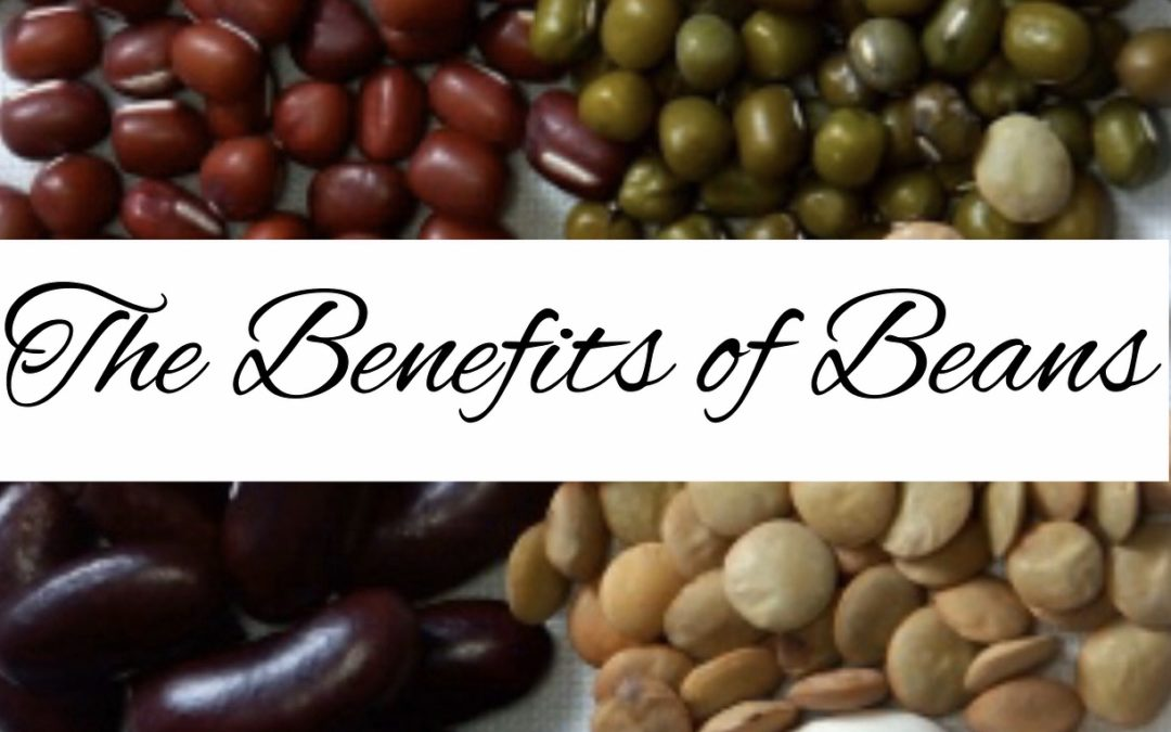 Beans are packed with plant-based protein, iron, zinc, potassium and other nutrients that offer weight loss and healthy benefits. Plus, they are cost-effective and convenient. Learn the calories, fiber and more benefits beans have to offer.