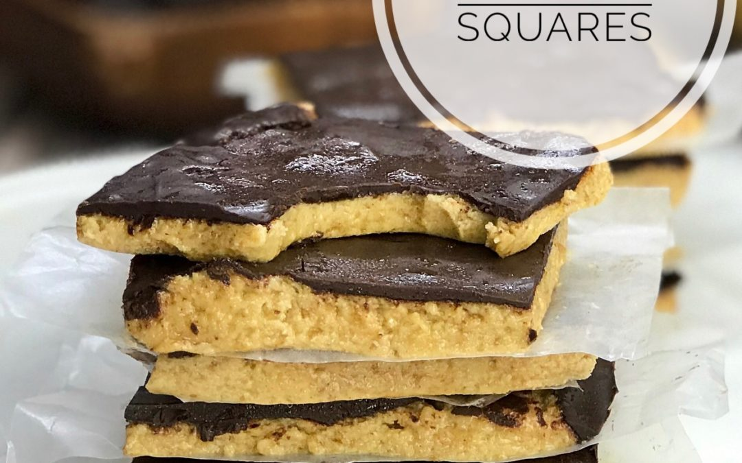 Dark Chocolate Peanut Butter Protein Squares